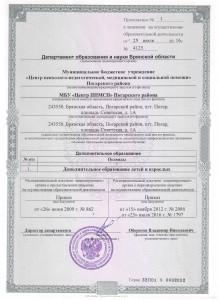 лицензия11_000